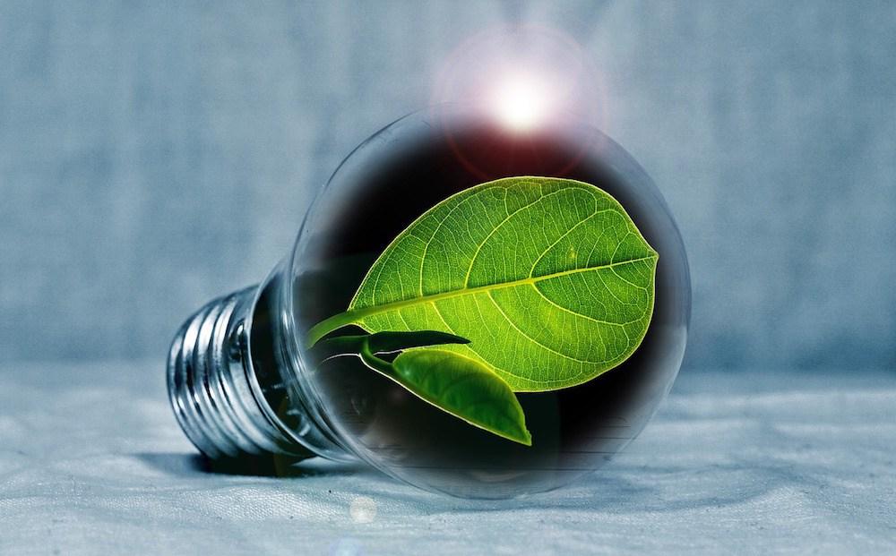 classement greenpeace de fournisseurs d'energie
