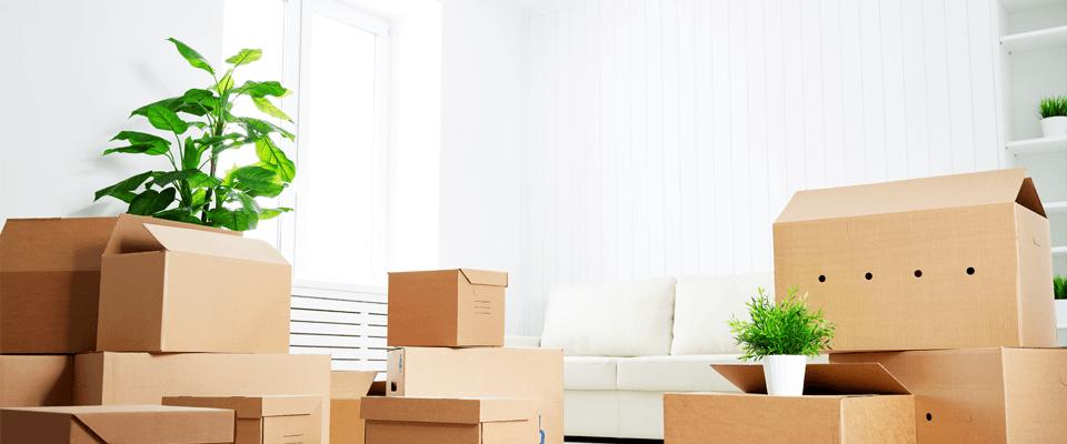 Cartons de déménagement empilés dans un logement