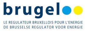 Logo de Brugel
