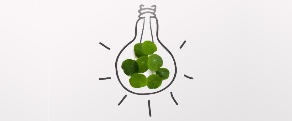 fournisseurs alternatifs d'énergie verte